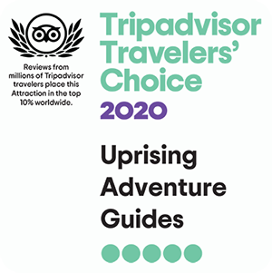 Trip Advisor Award for Rock Climbing
